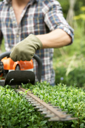 Foundation Certificate in Grounds Maintenance from Cleaning Training Wales